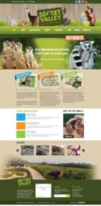 New Web Design Wexford