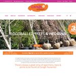 Caragh Nurseries Website