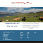 Currahee Food Consultancy - website design wexford